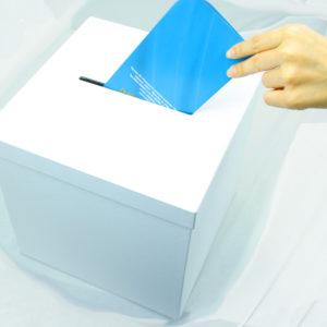 Коробка крышка/дно - урна для голосования